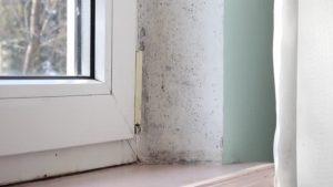 muffa e infiltrazioni sostituzione finestre castelfiorentino